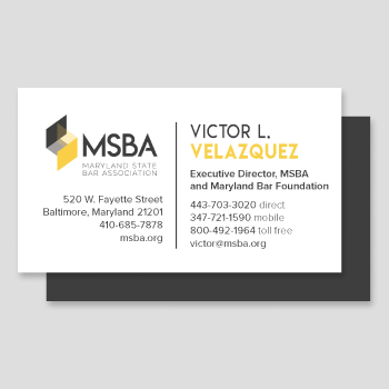 350×350-Detail-MSBA-Logo